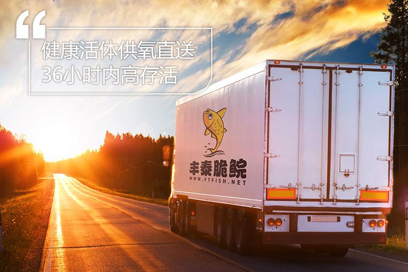 中山脆肉鲩鱼图片_中山市丰泰渔业有限公司 脆肉鲩 专业水产养殖